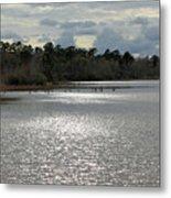 Lake Waccamaw II Metal Print