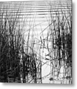 Lake Wake Metal Print