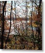Lake Wallenpaupack Through The Trees Metal Print