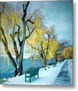 Lakeshore Walkway In Winter Metal Print