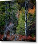 Lakeside In The Autumn Metal Print