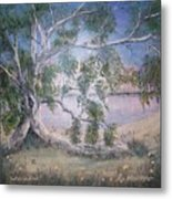Lakeside Limbs Metal Print