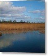 Lakeside Of Lough Derg Metal Print