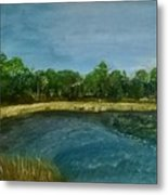 Lakeview Tallahassee Metal Print