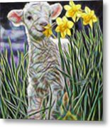 Lamb Collection Metal Print