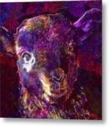 Lamb Spring Cute Animal  Metal Print