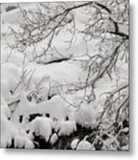 Lambs Canyon in Winter Metal Print