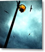 Lamps With Birds Metal Print by Meirion Matthias