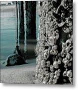 Land Meets Water Nature Photograph Metal Print