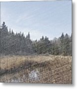 Land Of The 5 Bogs Metal Print