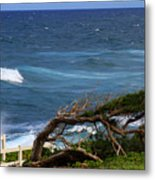 Land Wind And Sea Metal Print
