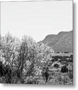 Landscape Galisteo Nm J10o Metal Print