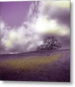 Landscape In Purple And Gold Metal Print