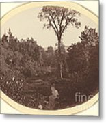 Landscape Near Williams College Metal Print