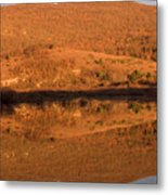 Landscape Perfectly Reflected In Palsko Lake Metal Print