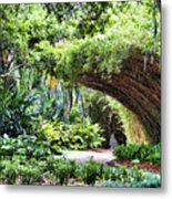 Landscape Rip Van Winkle Gardens Louisiana  Metal Print