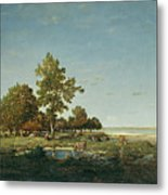 Landscape With A Clump Of Trees Metal Print
