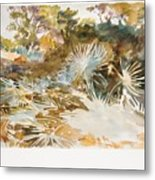 Landscape With Palmettos Metal Print