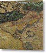 Landscape With Rabbits Saint Remy De Provence December 1889 Vincent Van Gogh 1853  1890 Metal Print