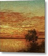 Landscape With Trees At The Rivers Metal Print