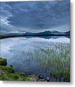 Landscape With Water Grass Metal Print