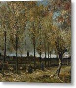 Lane With Poplars Metal Print