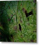 Languid Leaf Metal Print