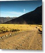 Lanin National Park Metal Print