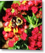 Lantanas And The Bee Metal Print