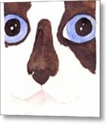 Large Eyed Cat Oswoa Metal Print by Christine Callahan
