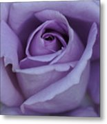 Large Purple Rose Center - 002 Metal Print