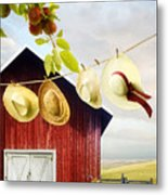 Large Red Barn With Hats On Clothesline In Field Of Wheat Metal Print