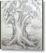 Large Shady Tree Metal Print