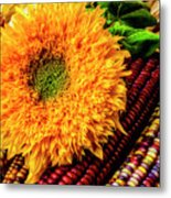 Large Sunflower On Indian Corn Metal Print