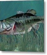 Largemouth Bass Metal Print