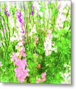 Larkspur Flowers In Soft Oil Style Metal Print
