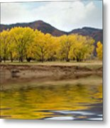 Las Animas Fall Metal Print