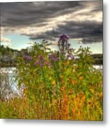 Last Flower Of Fall Metal Print