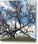 Last One Standing Metal Print by Wendy J St Christopher