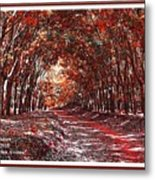 Late Autumn Avenue H A With Decorative Ornate Printed Frame. Metal Print