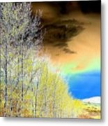 Late Autumn Metal Print by Will Borden