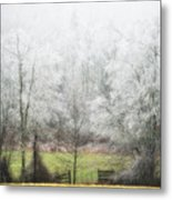 Late Fall Ice Storm Central Ma 2008 Metal Print