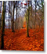 Late Fall In The Woods Metal Print