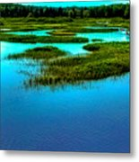 Late May On The Moose River Metal Print