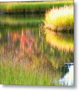 Stillness Of Late Summer Marsh  Metal Print