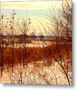Late Winter at Emiquon Metal Print