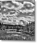 Late Winter At The Tobie Trail Bridge 2 Metal Print