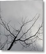 Late Winter Clouds Metal Print