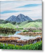 Late Winter In California Metal Print