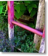 Laura's Ladder Metal Print